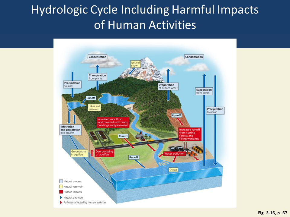 Hydrologic Cycle Including Harmful Impacts of Human Activities