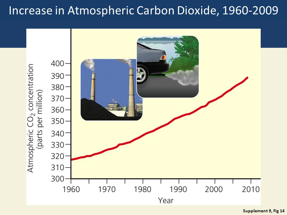 Increase in Atmospheric Carbon Dioxide, 1960-2009