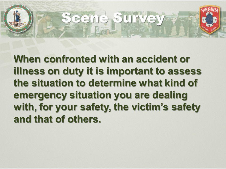 Scene Survey