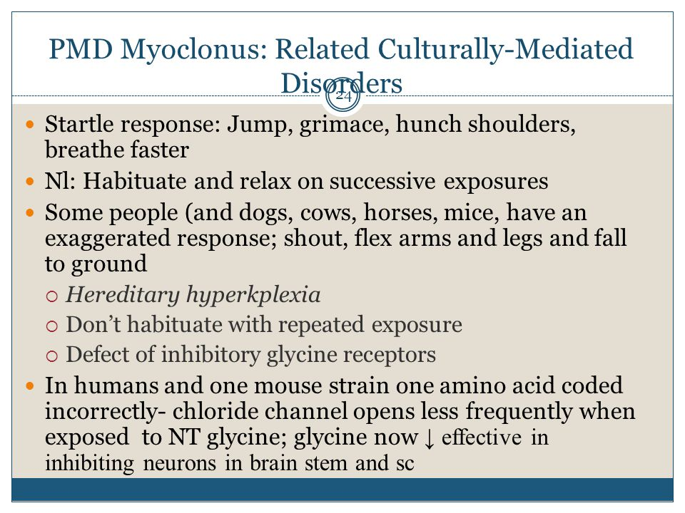 PMD Myoclonus: Related Culturally-Mediated Disorders