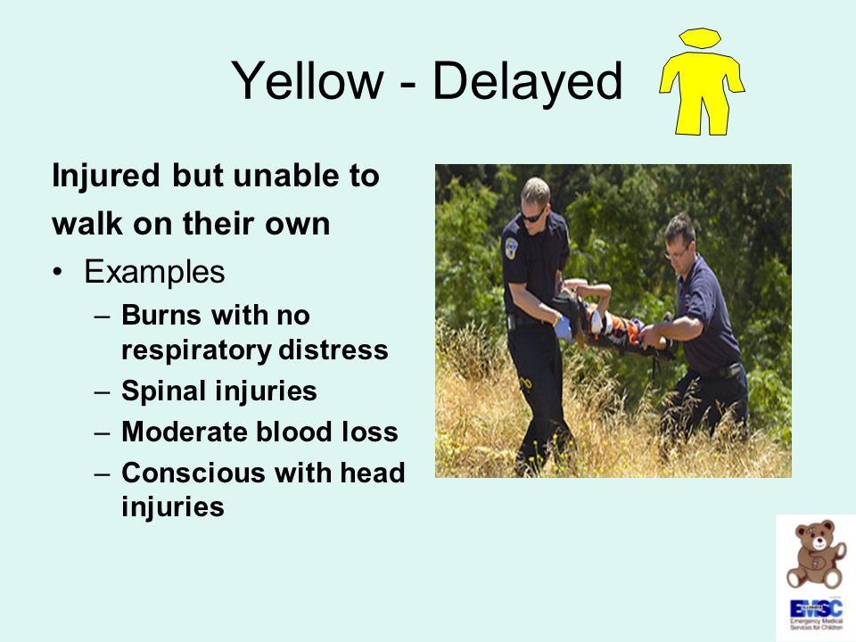 Yellow - Delayed Injured but unable to walk on their own Examples