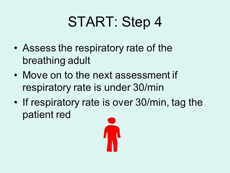 START: Step 4 Assess the respiratory rate of the breathing adult