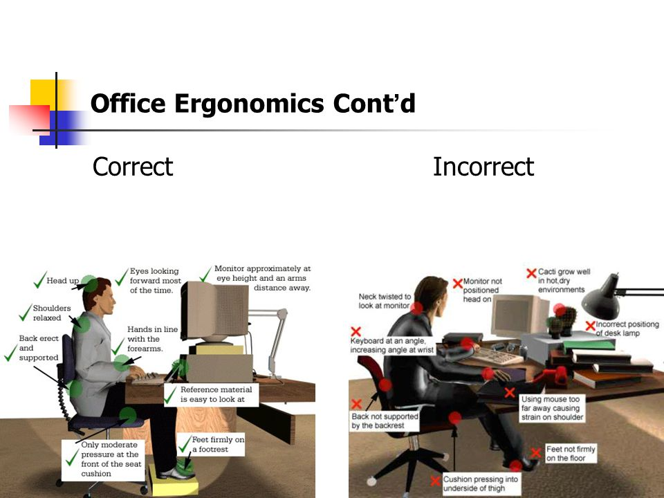 Office Ergonomics Cont'd