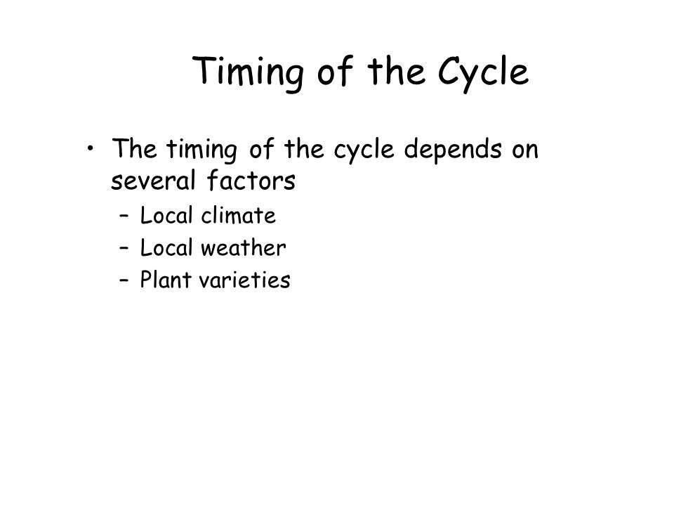 Timing of the Cycle The timing of the cycle depends on several factors