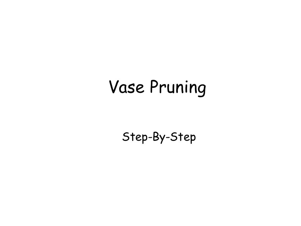 Vase Pruning Step-By-Step Vase Pruning Step-By-Step © Ron LaFond 2006