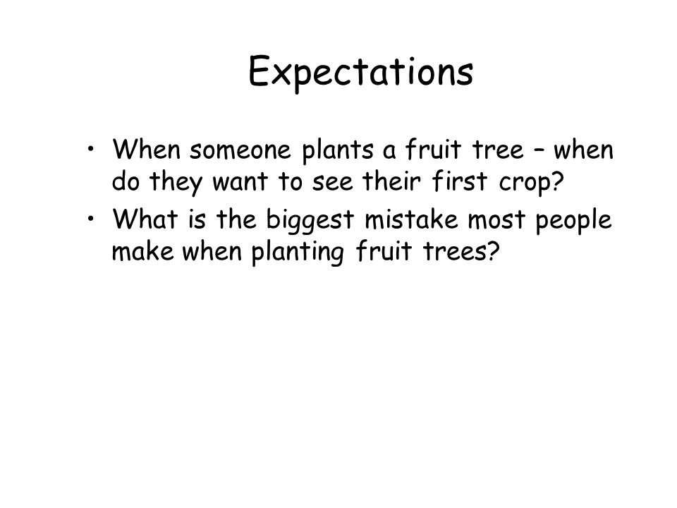 Expectations When someone plants a fruit tree – when do they want to see their first crop