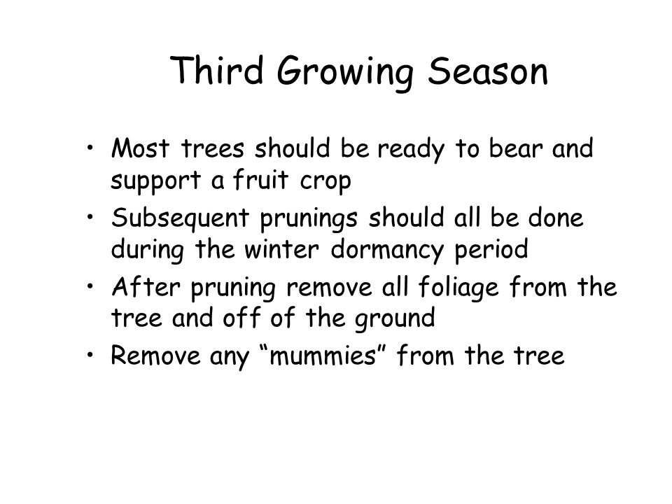 Third Growing Season Most trees should be ready to bear and support a fruit crop.