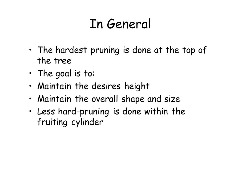 In General The hardest pruning is done at the top of the tree