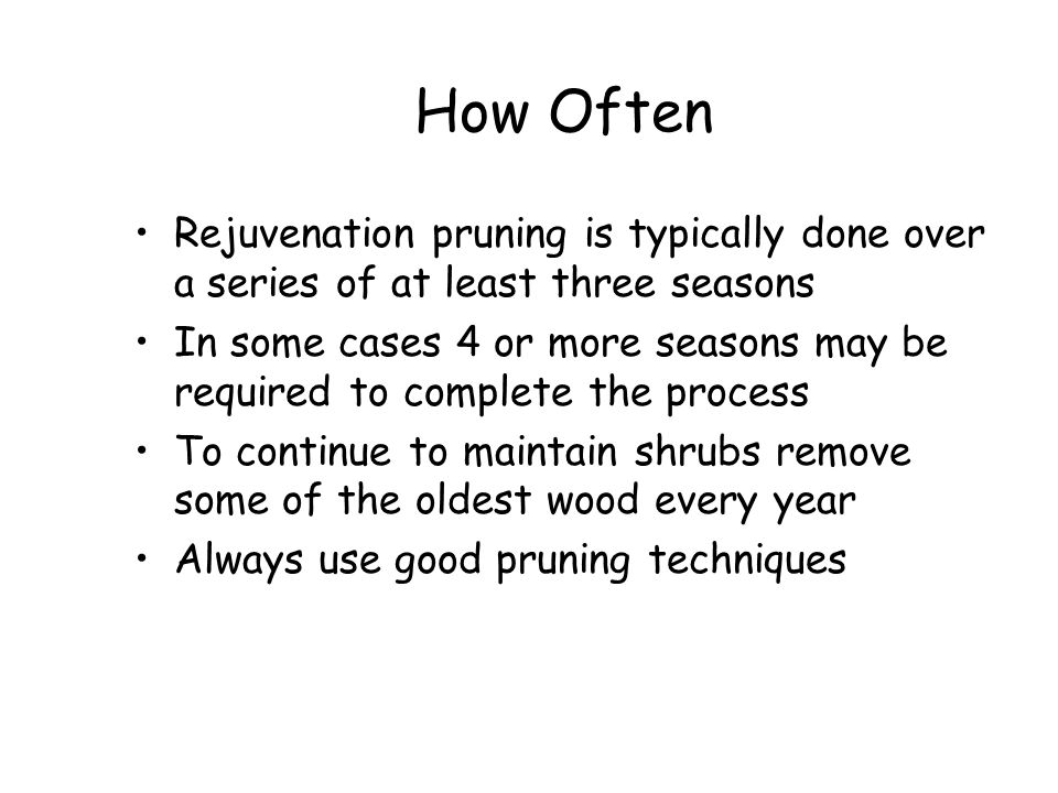 How Often Rejuvenation pruning is typically done over a series of at least three seasons.