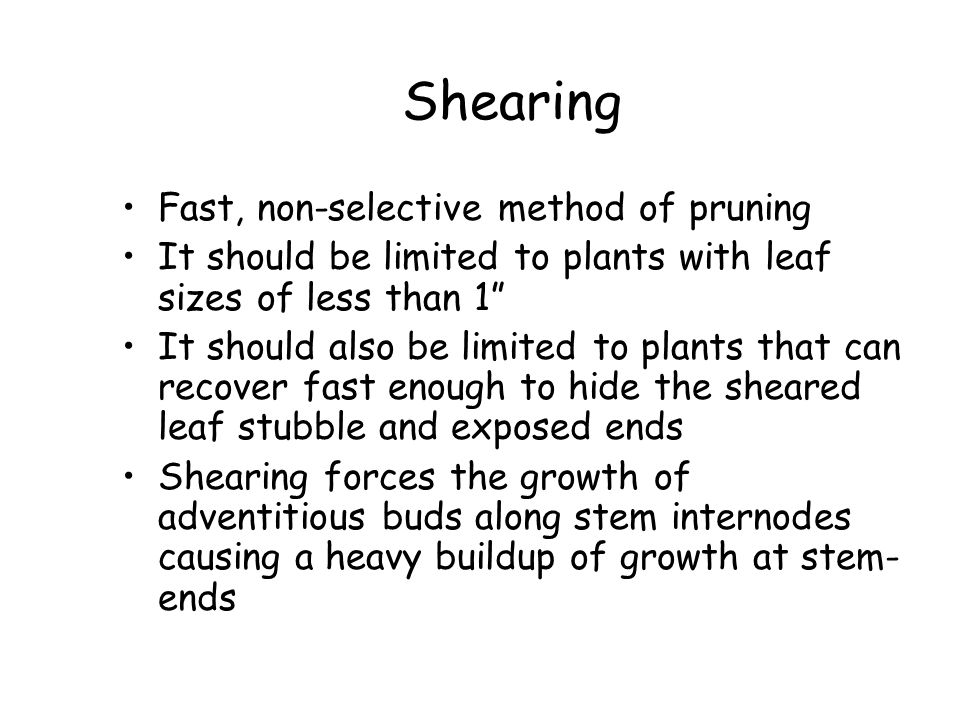 Shearing Fast, non-selective method of pruning