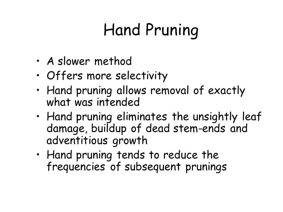 Hand Pruning A slower method Offers more selectivity
