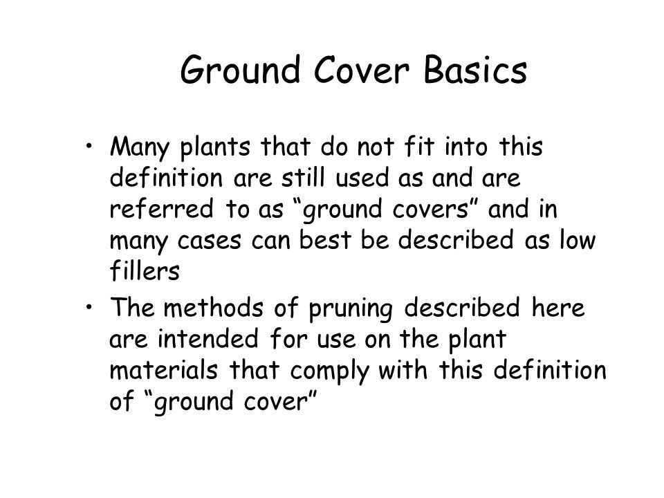 Ground Cover Basics