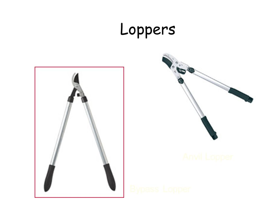 Loppers Anvil Lopper Bypass Lopper Loppers Left – bypass lopper