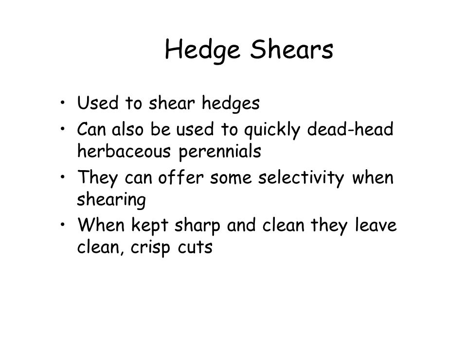Hedge Shears Used to shear hedges