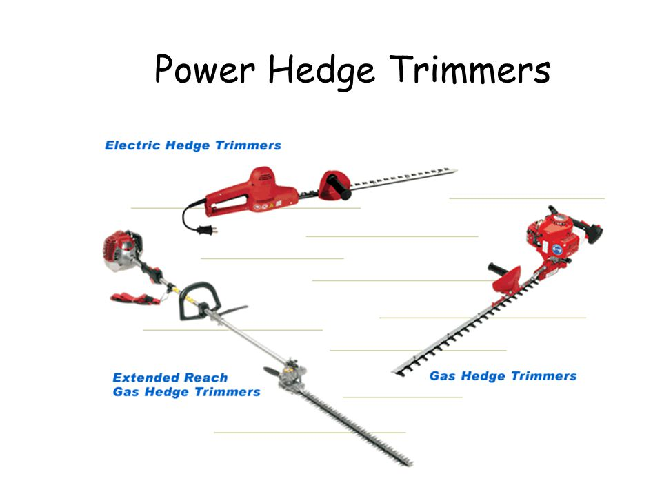 Power Hedge Trimmers Power Hedge Trimmers © Ron LaFond 2006