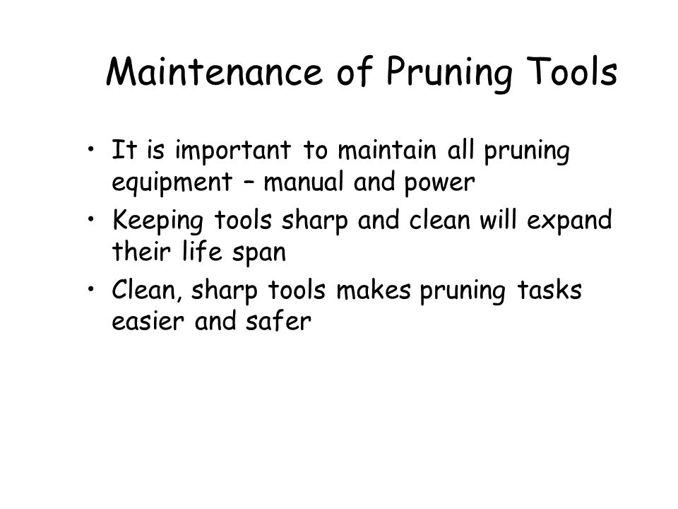 Maintenance of Pruning Tools