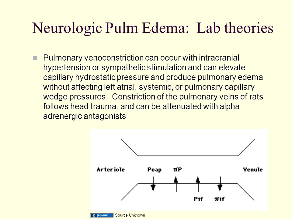 Neurologic Pulm Edema: Lab theories