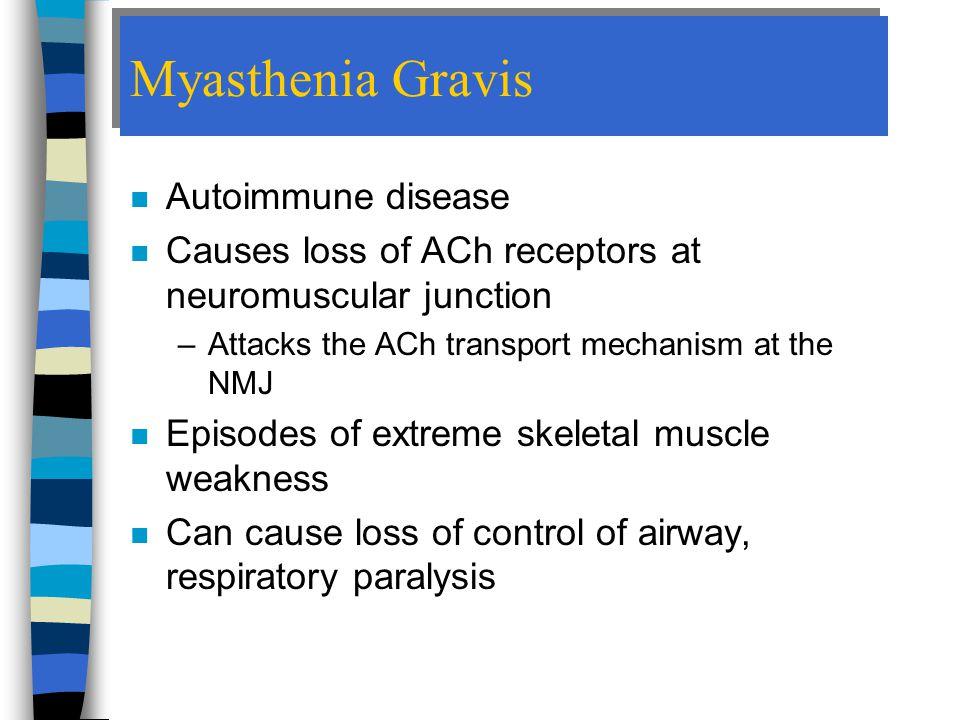 Myasthenia Gravis Autoimmune disease