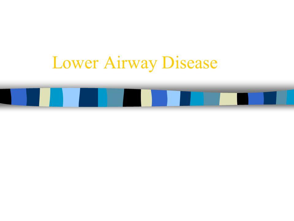 Lower Airway Disease