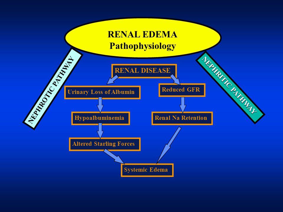 RENAL EDEMA Pathophysiology