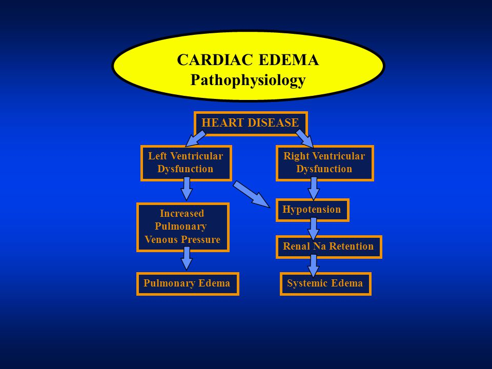 CARDIAC EDEMA Pathophysiology