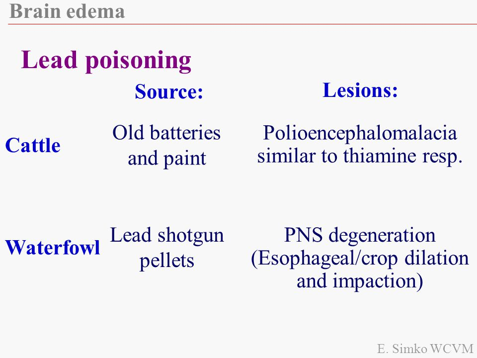Lead poisoning Brain edema Lesions: Source: Old batteries and paint