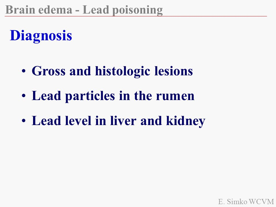 Diagnosis Gross and histologic lesions Lead particles in the rumen