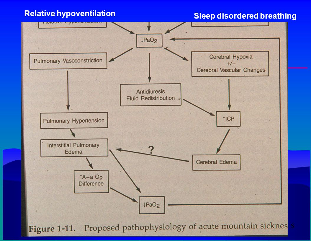 Relative hypoventilation