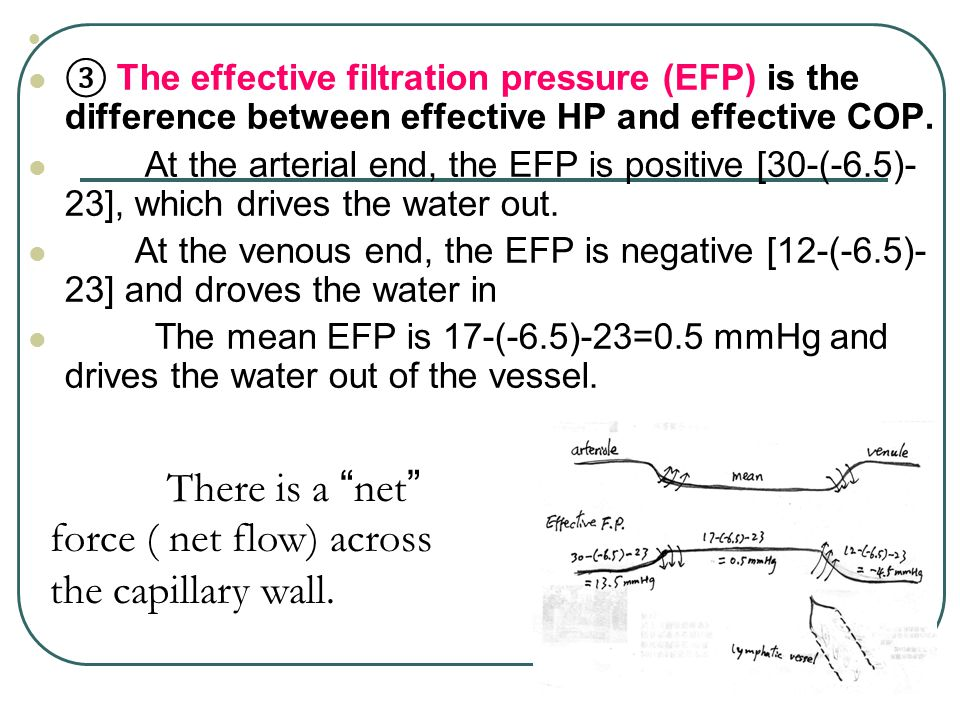 There is a net force ( net flow) across the capillary wall.