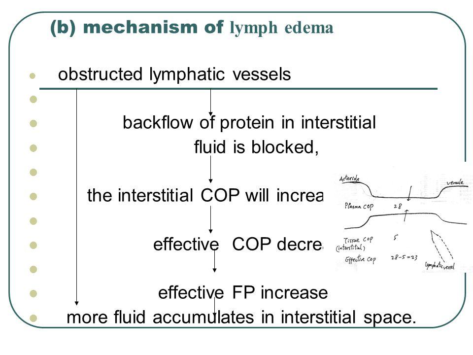 (b) mechanism of lymph edema
