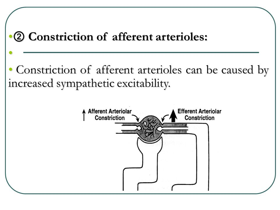 ② Constriction of afferent arterioles: