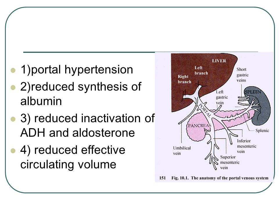 1)portal hypertension 2)reduced synthesis of albumin. 3) reduced inactivation of ADH and aldosterone.