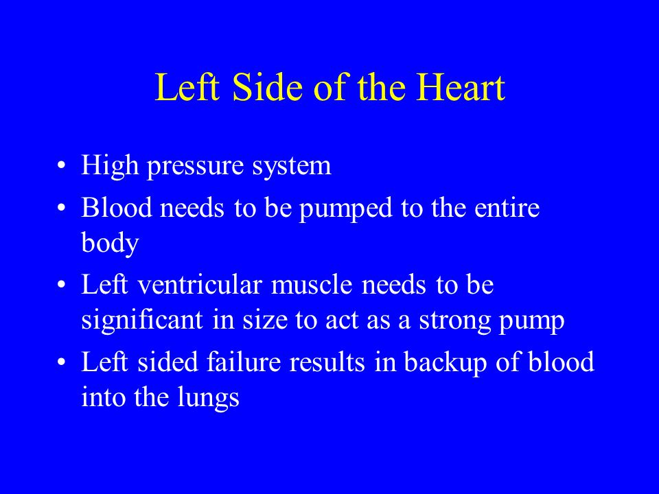 Left Side of the Heart High pressure system