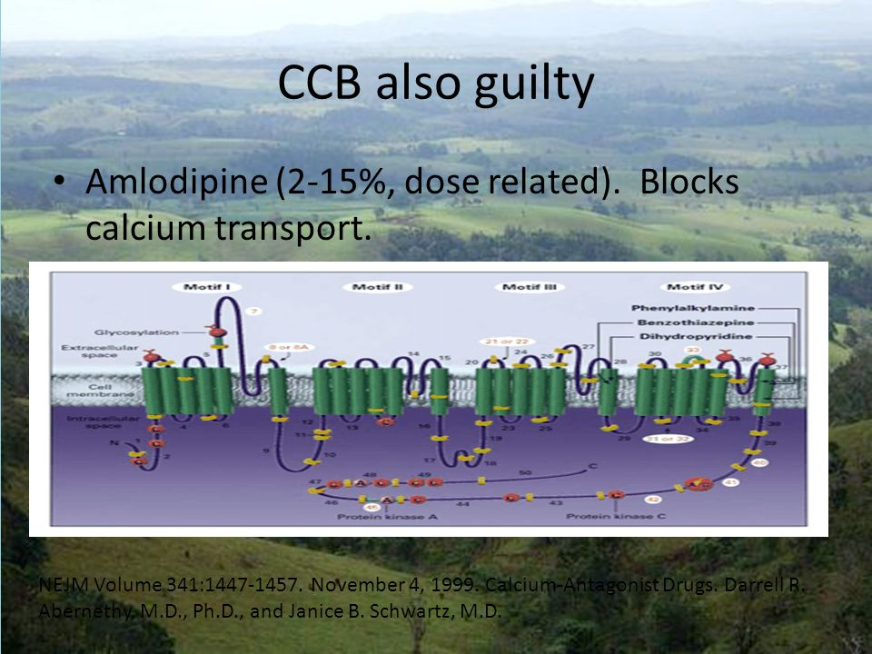 CCB also guilty Amlodipine (2-15%, dose related). Blocks calcium transport.