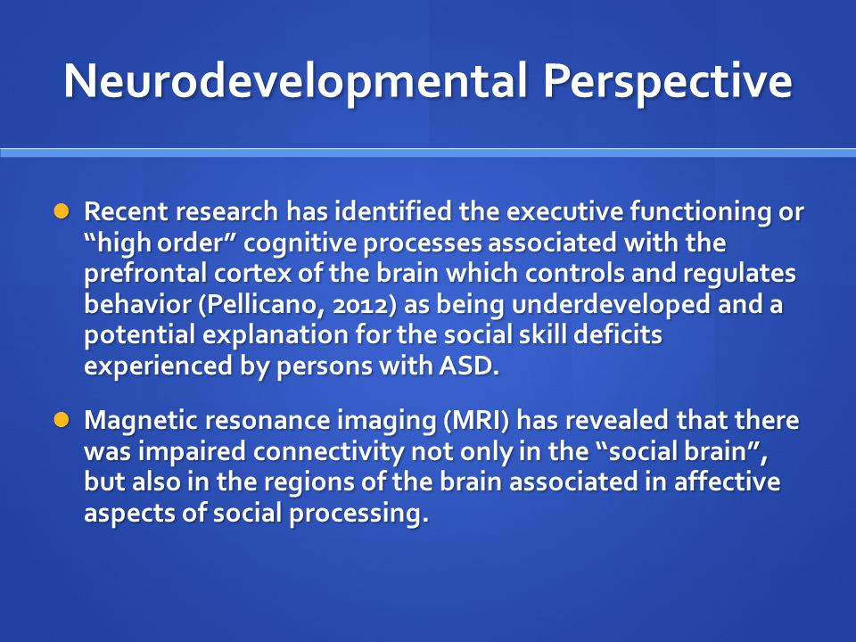 Neurodevelopmental Perspective