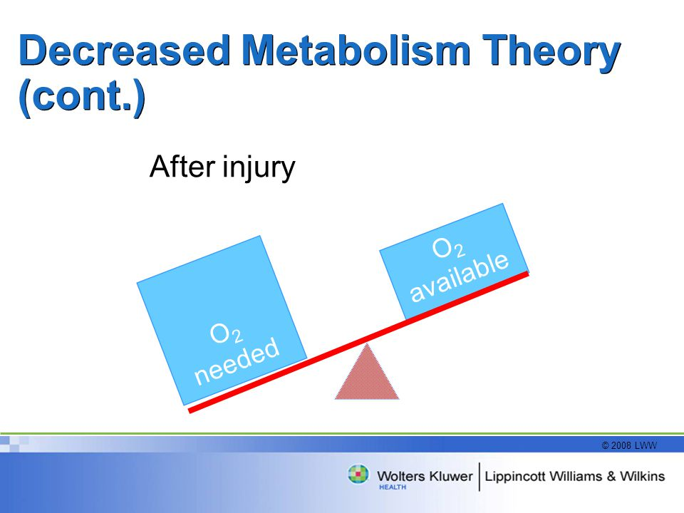 Decreased Metabolism Theory (cont.)