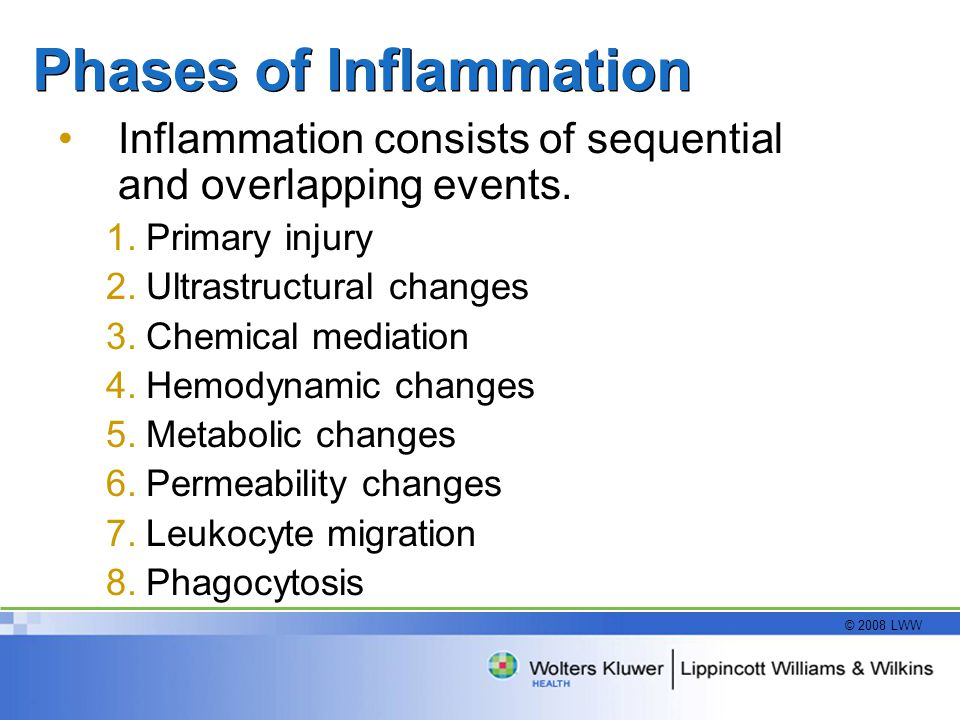 Phases of Inflammation