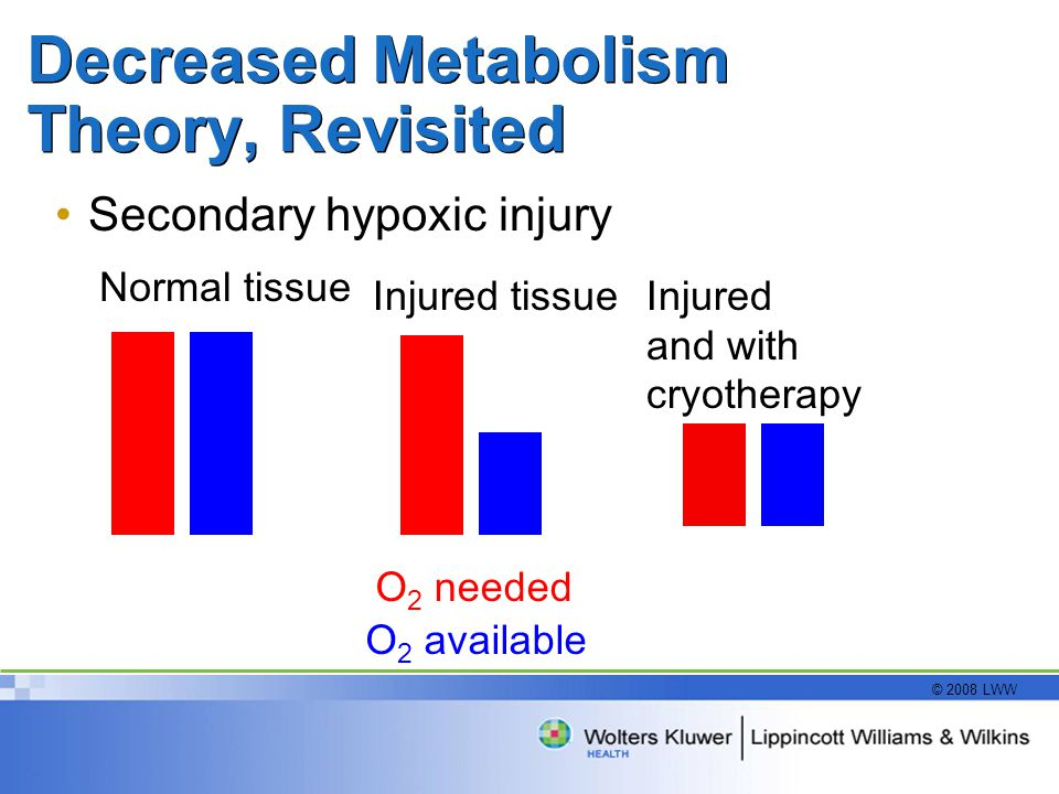 Decreased Metabolism Theory, Revisited