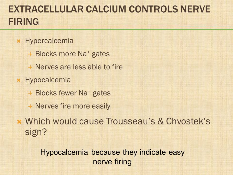 Extracellular Calcium Controls Nerve Firing