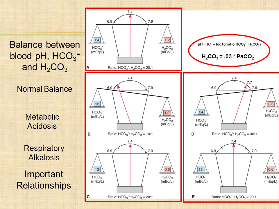 Balance between blood pH, HCO3= and H2CO3 Insert fig. 6-16