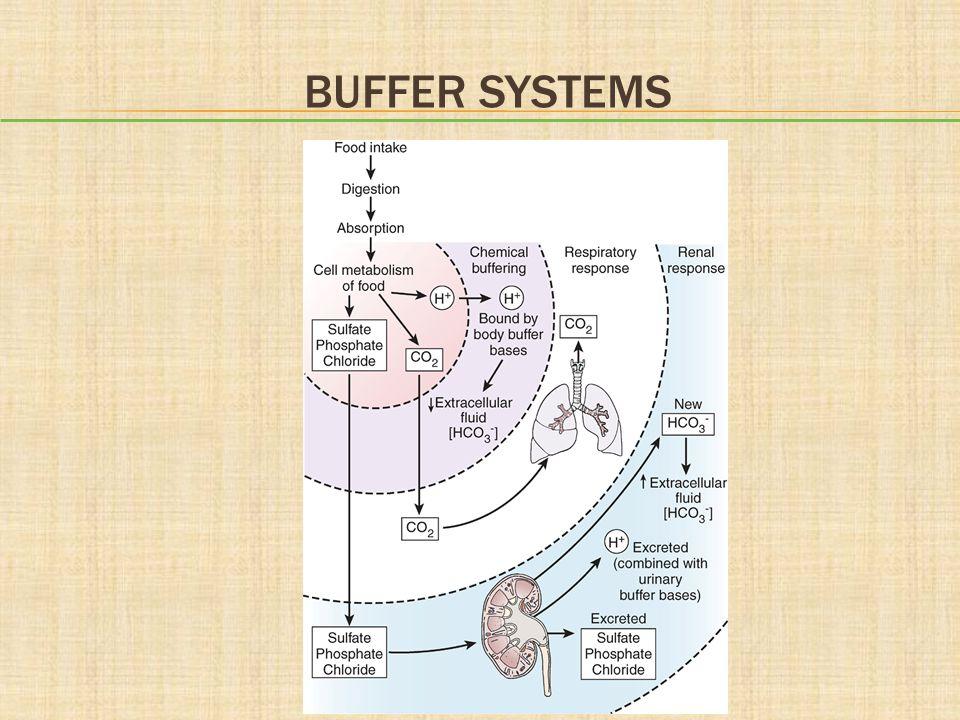 Buffer Systems