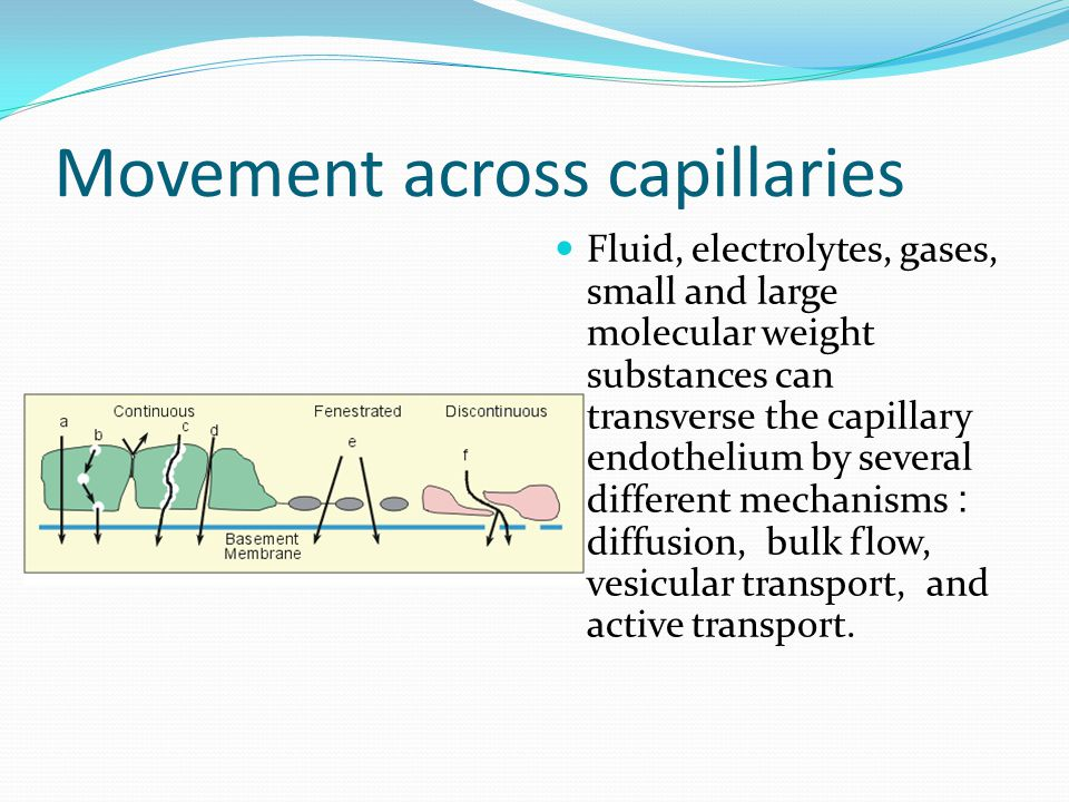 Movement across capillaries