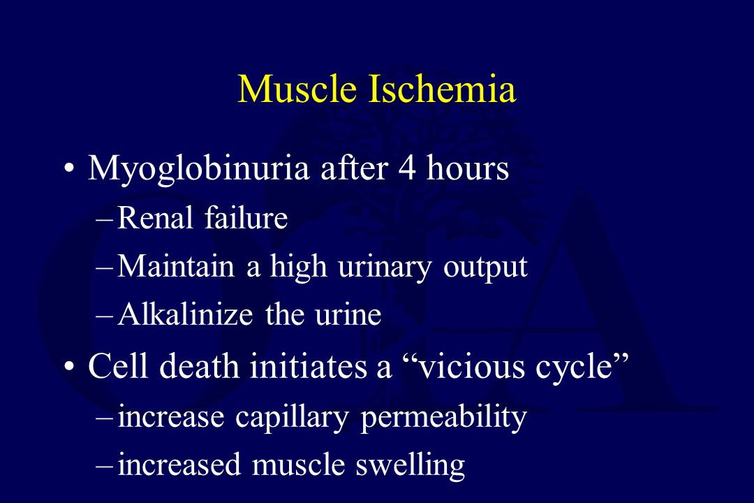 Muscle Ischemia Myoglobinuria after 4 hours