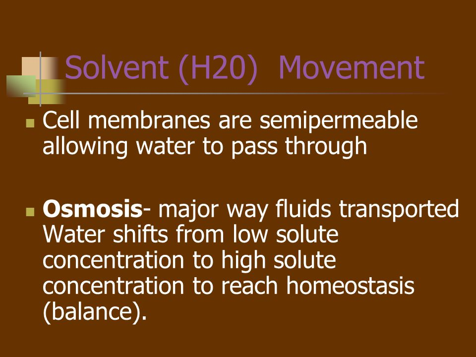 Solvent (H20) Movement Cell membranes are semipermeable allowing water to pass through.