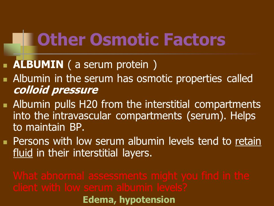 Other Osmotic Factors ALBUMIN ( a serum protein )