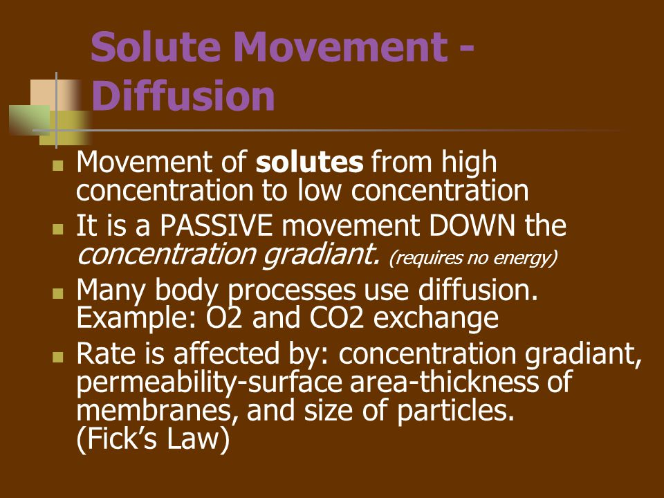Solute Movement - Diffusion