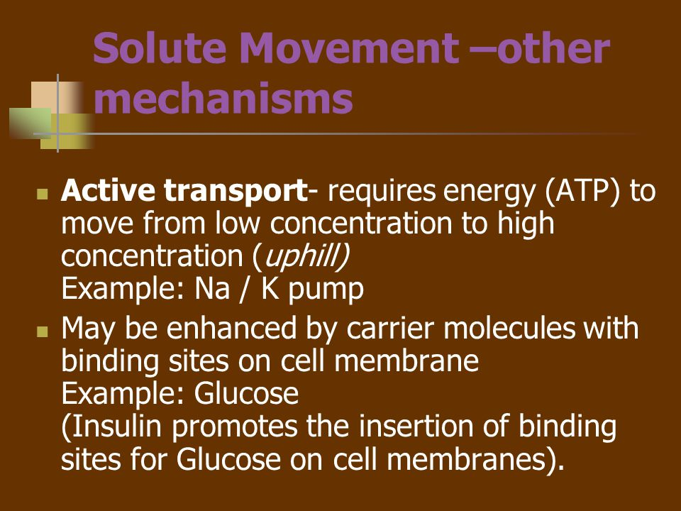 Solute Movement –other mechanisms