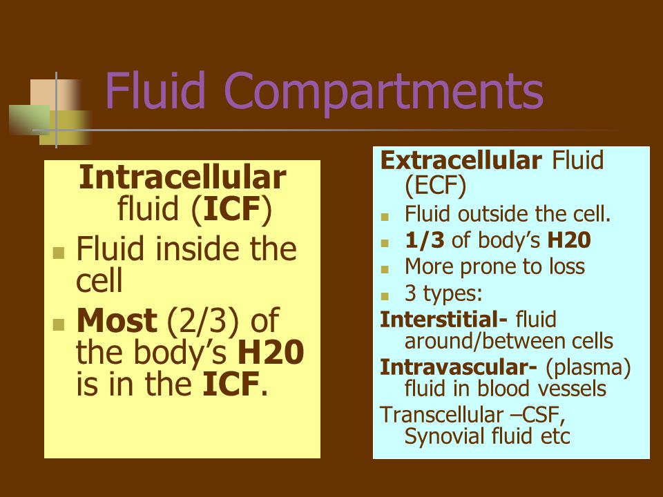 Intracellular fluid (ICF)