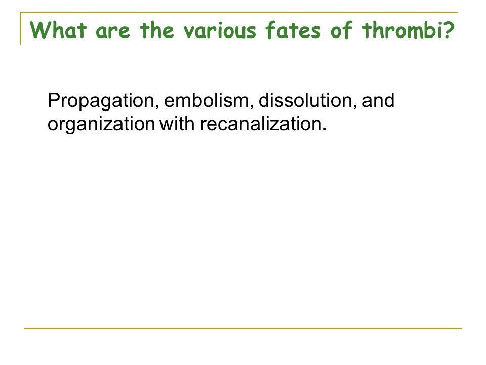 What are the various fates of thrombi