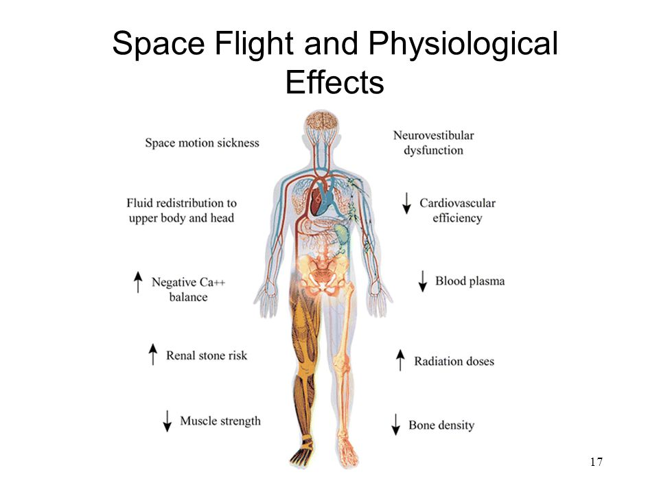 Space Flight and Physiological Effects